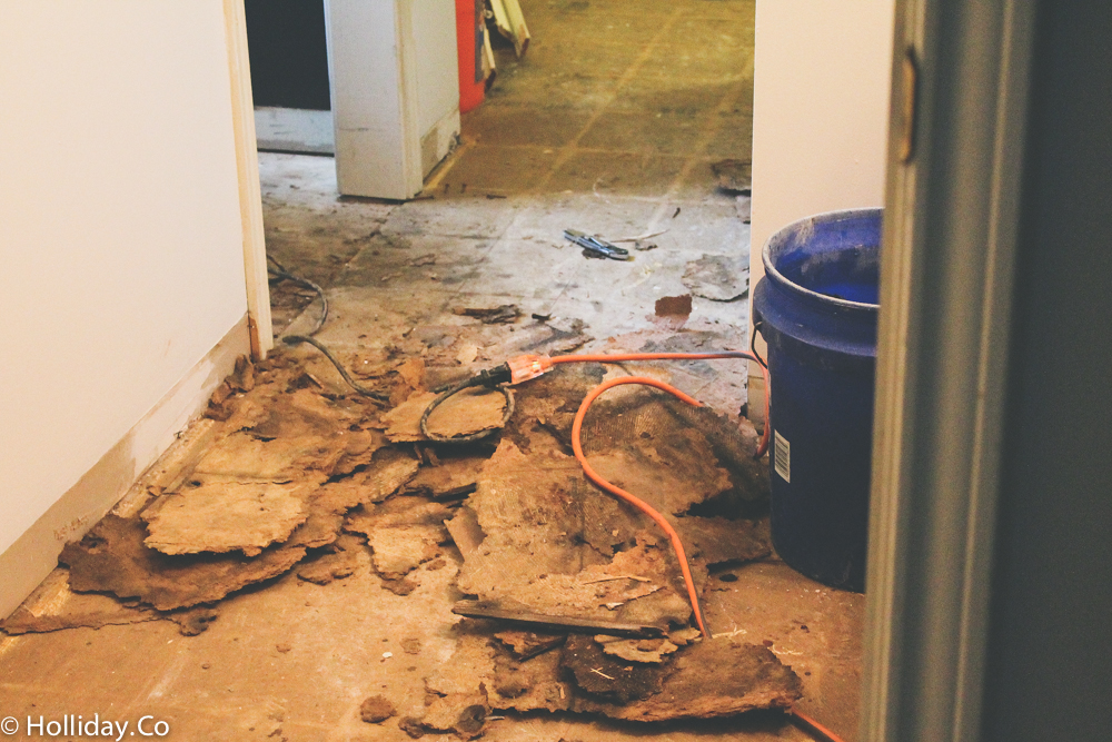 bathroom renovation, bathroom remodel,demo day